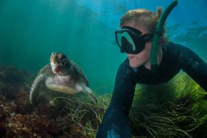 Image of Man Freediving with Turutle - South Tampa Freediving Classes