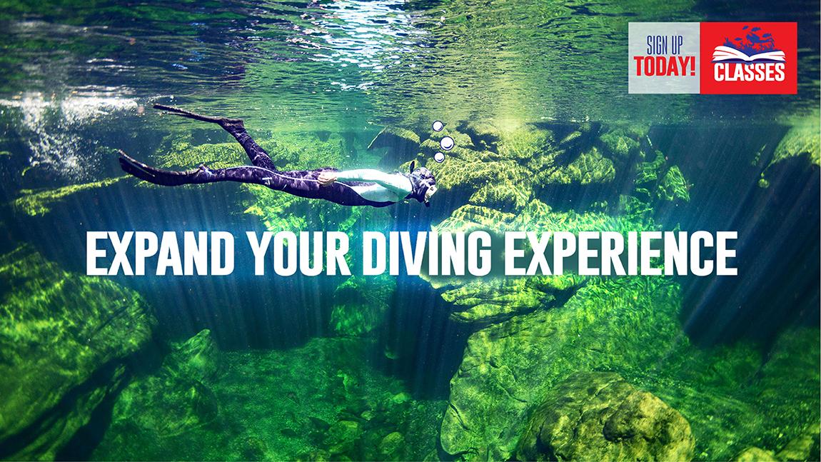 Scuba Classes Tampa Scuba Diving Classes Tampa Fl 813 832 6669